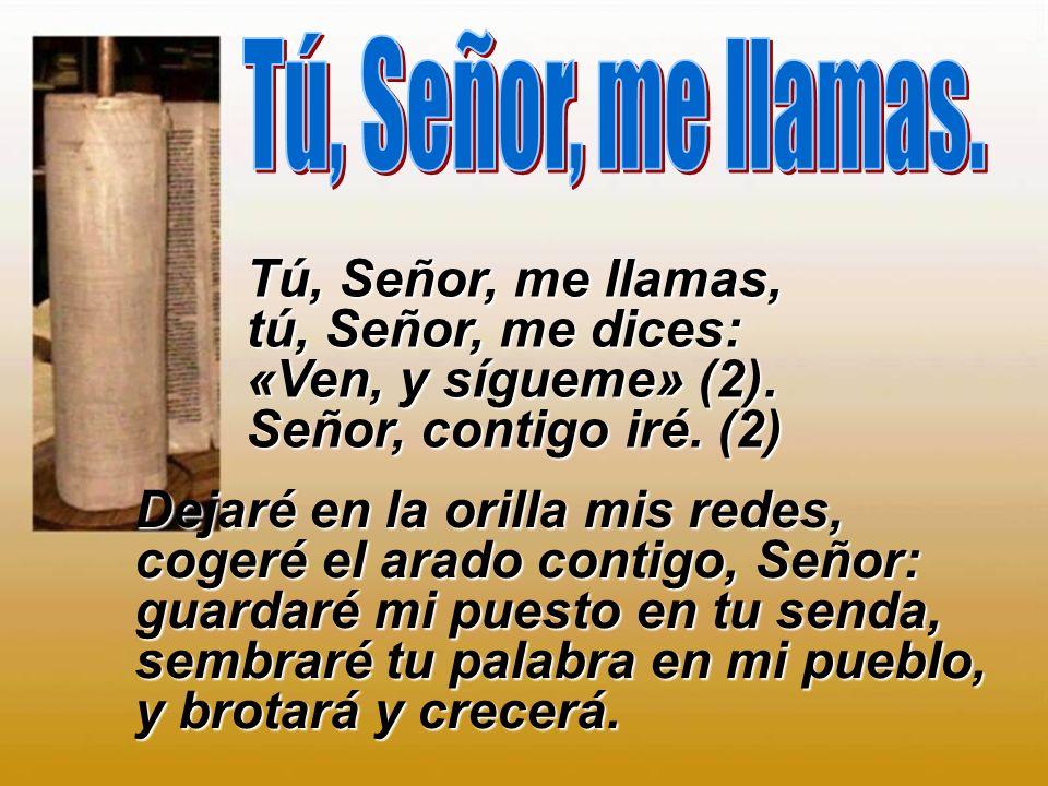 Tú, Señor, me llamas. Tú, Señor, me llamas, tú, Señor, me dices: «Ven, y sígueme» (2). Señor, contigo iré. (2)