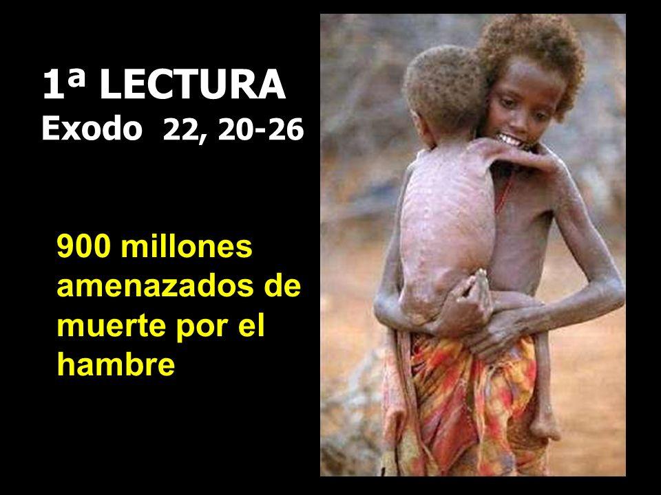 1ª LECTURA Exodo 22, 20-26 900 millones amenazados de muerte por el hambre