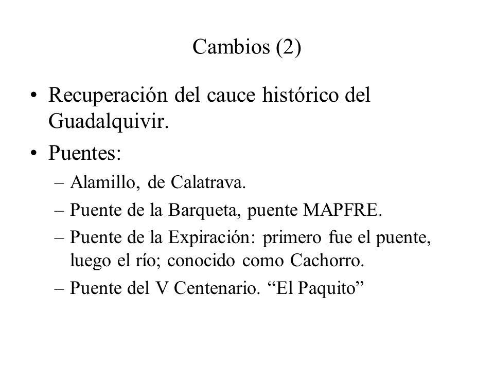 Recuperación del cauce histórico del Guadalquivir. Puentes: