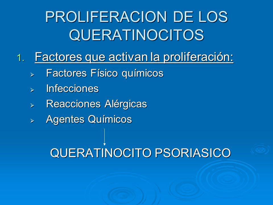 PROLIFERACION DE LOS QUERATINOCITOS