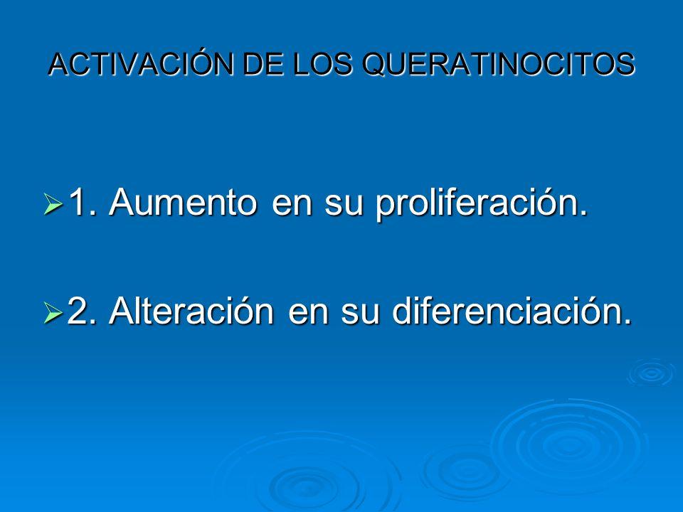 ACTIVACIÓN DE LOS QUERATINOCITOS