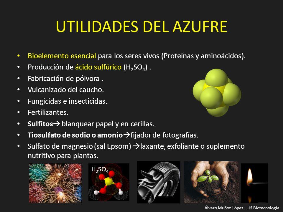 UTILIDADES DEL AZUFRE Bioelemento esencial para los seres vivos (Proteínas y aminoácidos). Producción de ácido sulfúrico (H2SO4) .