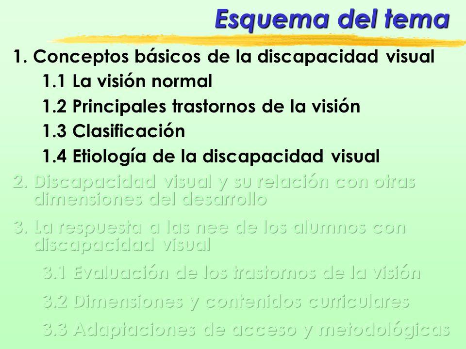 Esquema del tema 1. Conceptos básicos de la discapacidad visual