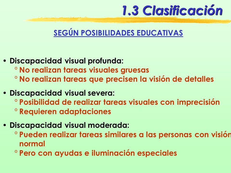 SEGÚN POSIBILIDADES EDUCATIVAS