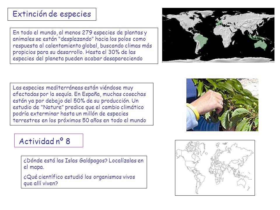 Extinción de especies Actividad nº 8