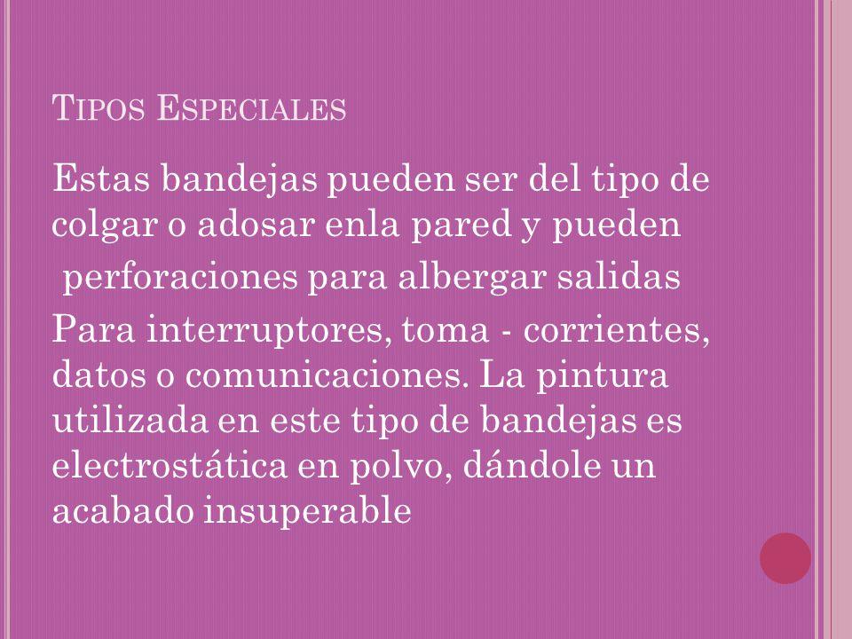 Tipos Especiales