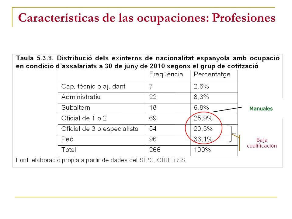 Características de las ocupaciones: Profesiones