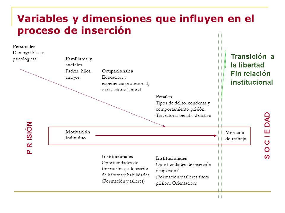 Variables y dimensiones que influyen en el proceso de inserción
