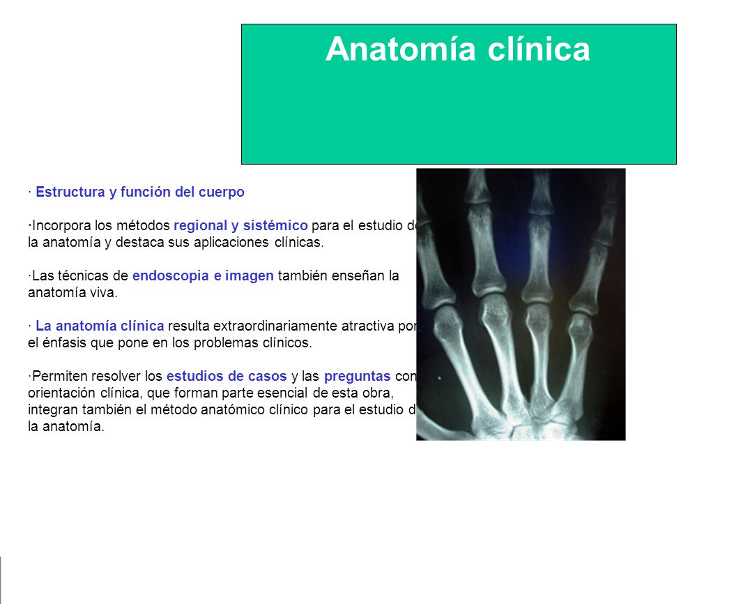 Hermosa Preguntas Anatomía Clínica Elaboración - Anatomía de Las ...