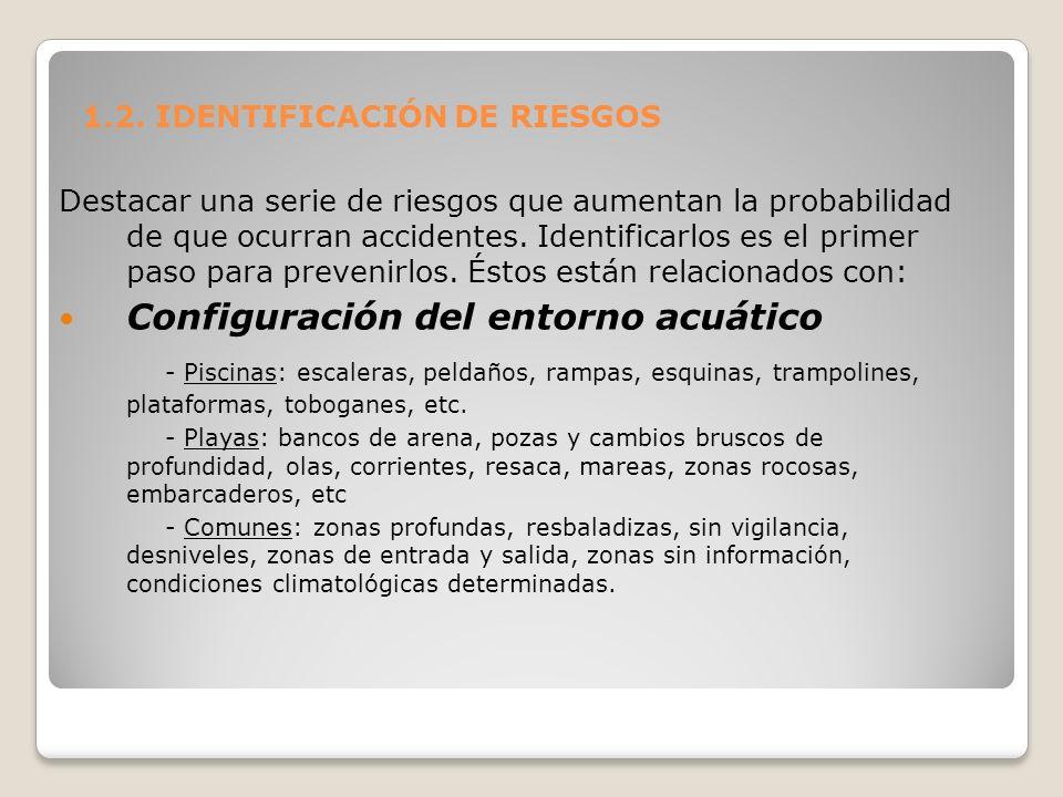 1.2. IDENTIFICACIÓN DE RIESGOS