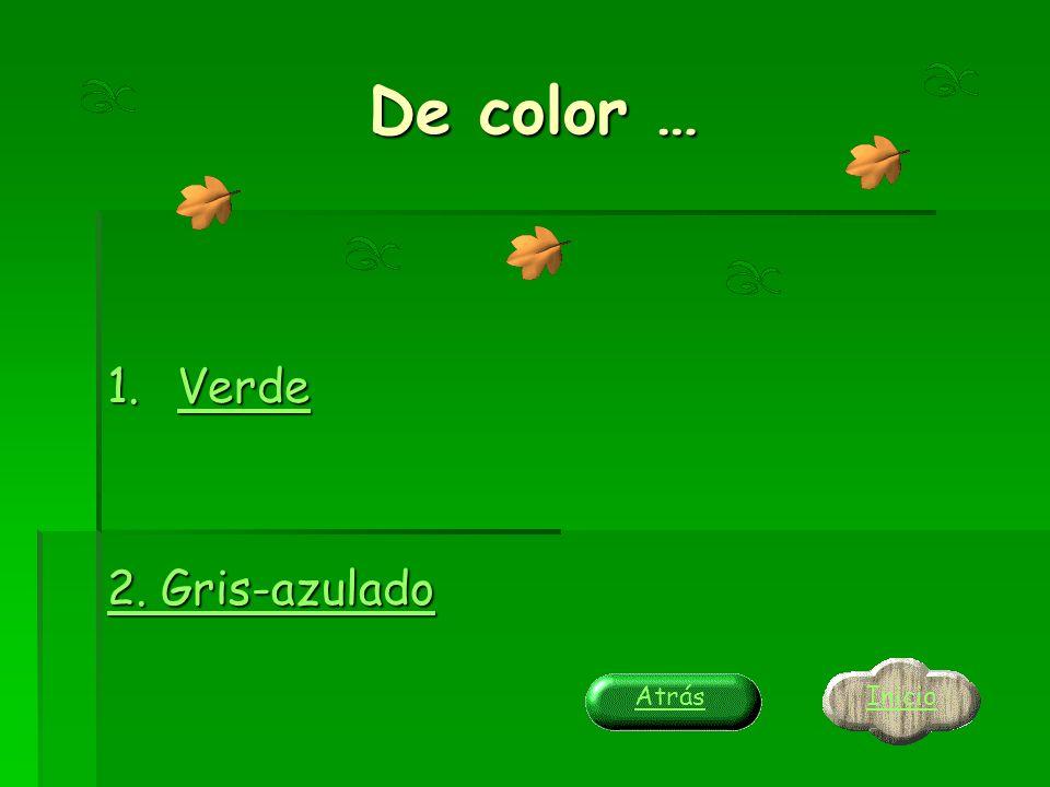 De color … Verde 2. Gris-azulado Inicio Atrás