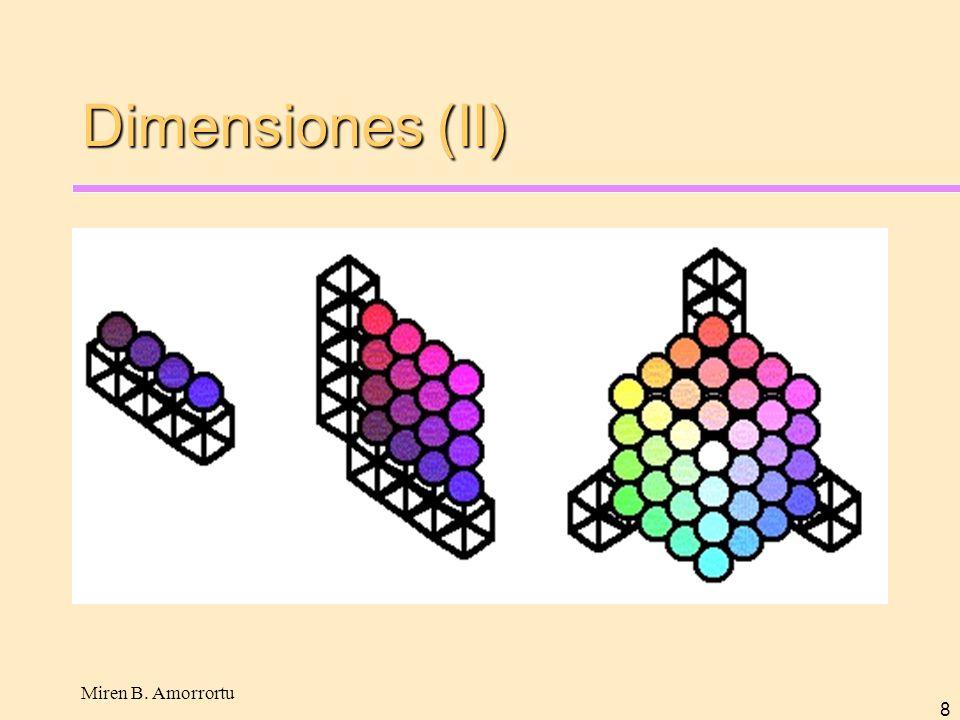 Dimensiones (II) Miren B. Amorrortu