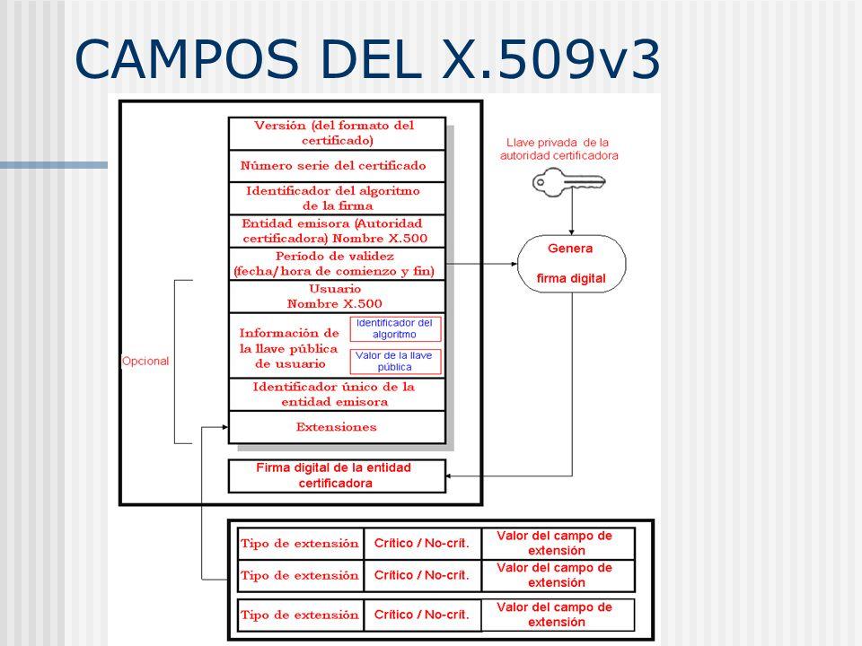 CAMPOS DEL X.509v3 Una descripción de los campos viene en las fotocopias