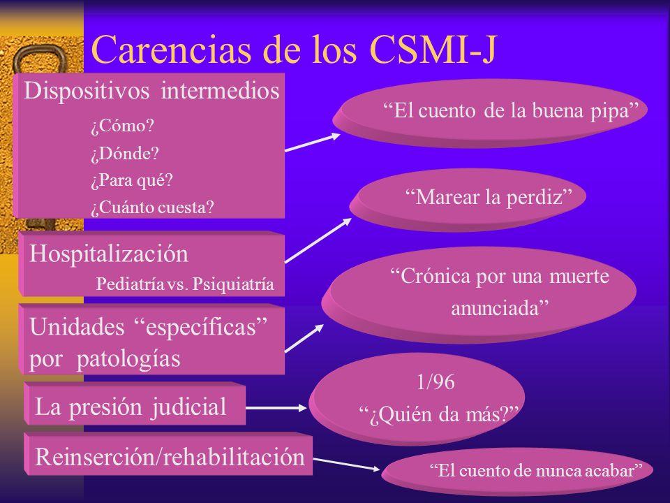 Carencias de los CSMI-J