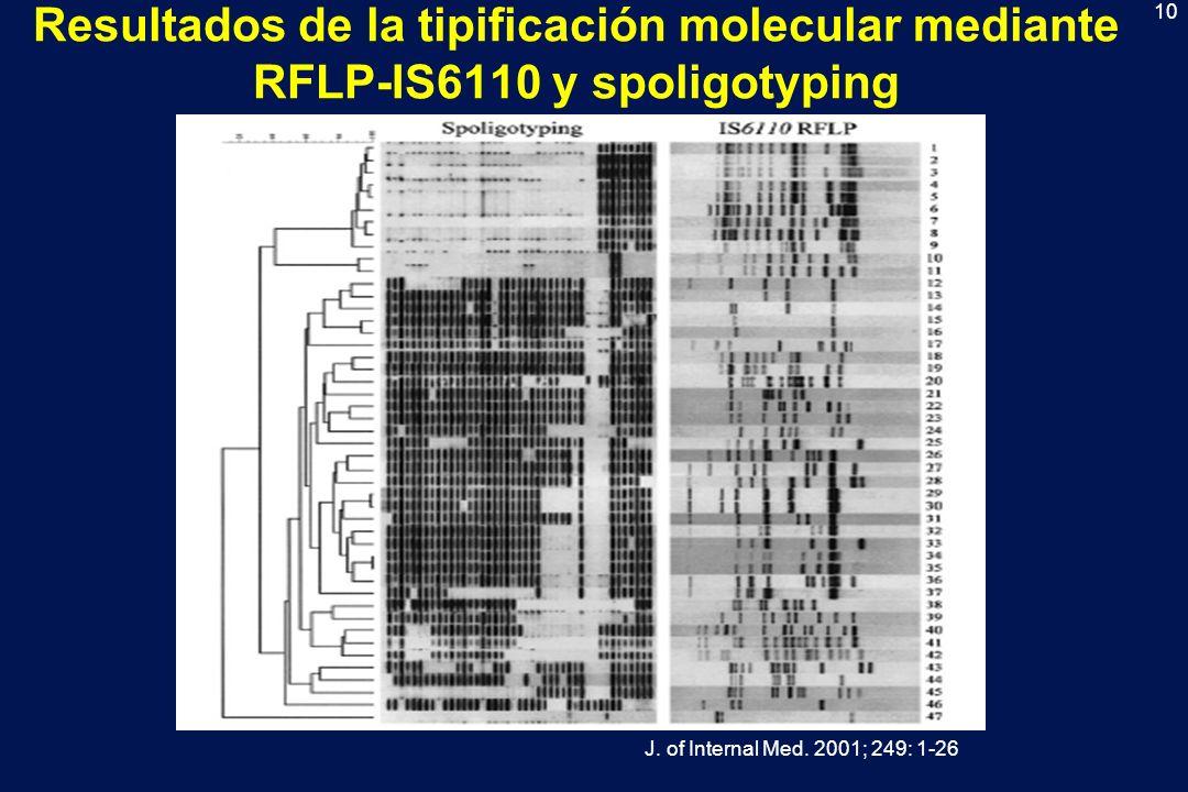 Resultados de la tipificación molecular mediante RFLP-IS6110 y spoligotyping