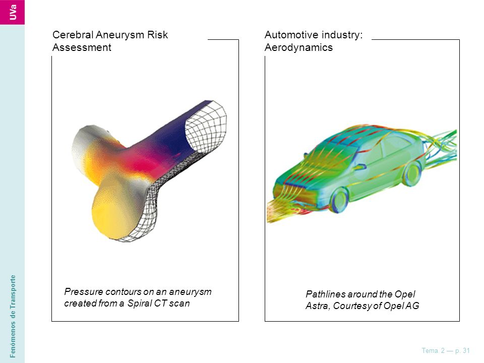 Cerebral Aneurysm Risk Assessment Automotive industry: Aerodynamics