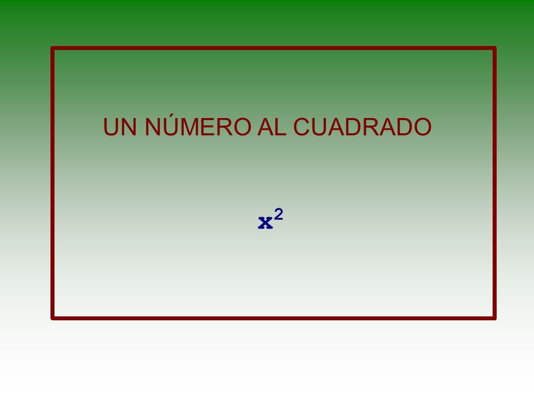 UN NÚMERO AL CUADRADO x2