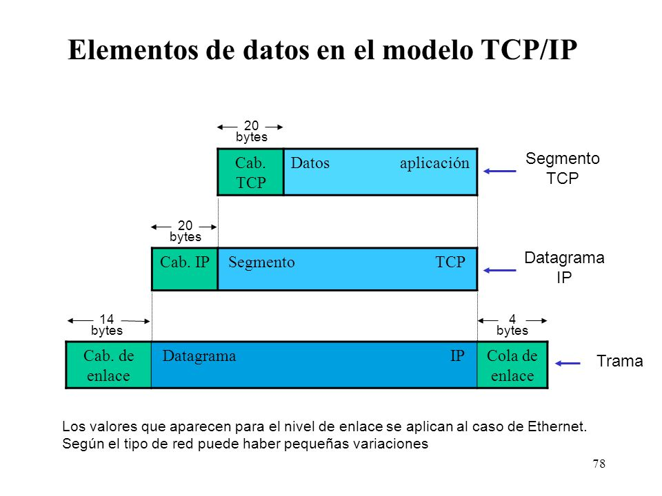 Elementos de datos en el modelo TCP/IP