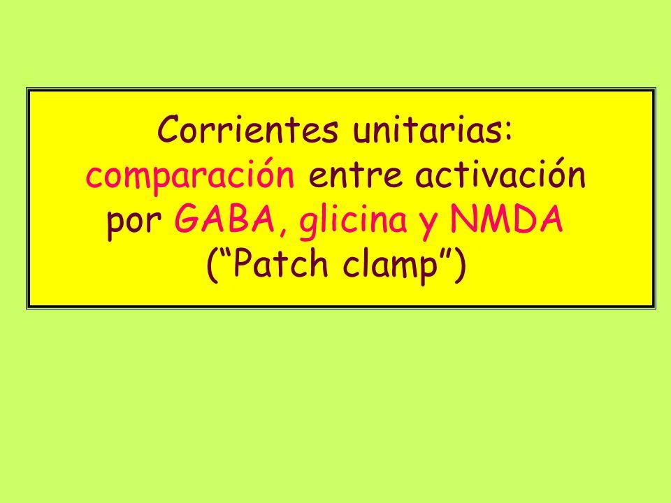 Corrientes unitarias: comparación entre activación por GABA, glicina y NMDA ( Patch clamp )