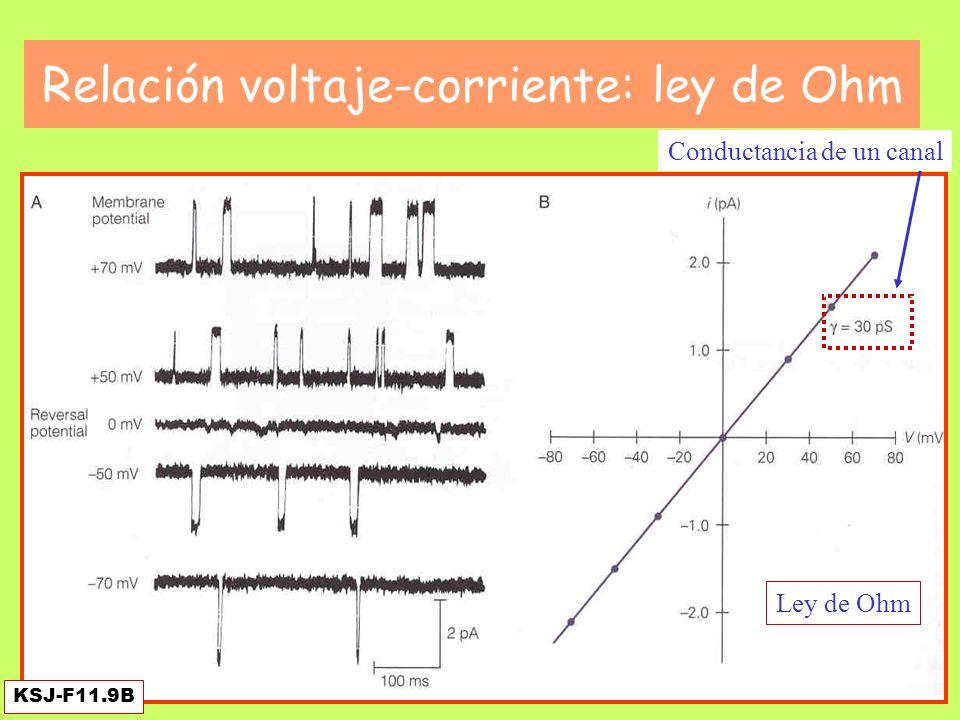Relación voltaje-corriente: ley de Ohm