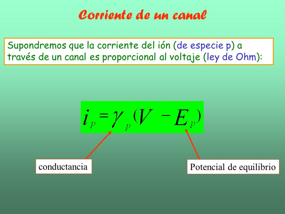 Corriente de un canalSupondremos que la corriente del ión (de especie p) a través de un canal es proporcional al voltaje (ley de Ohm):