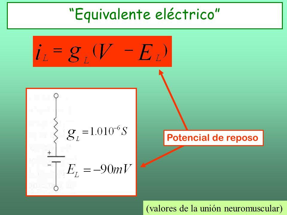 Equivalente eléctrico