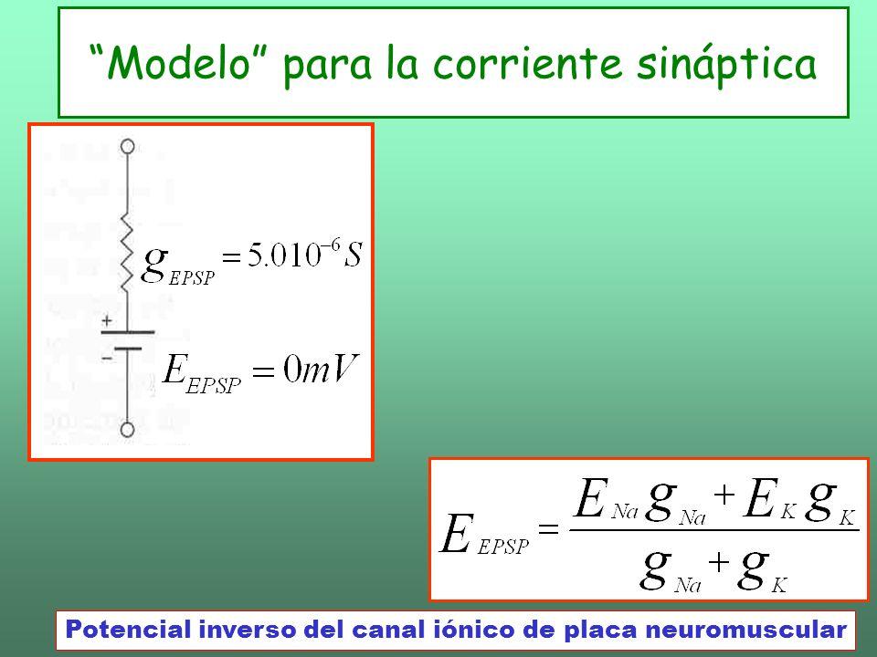 Modelo para la corriente sináptica