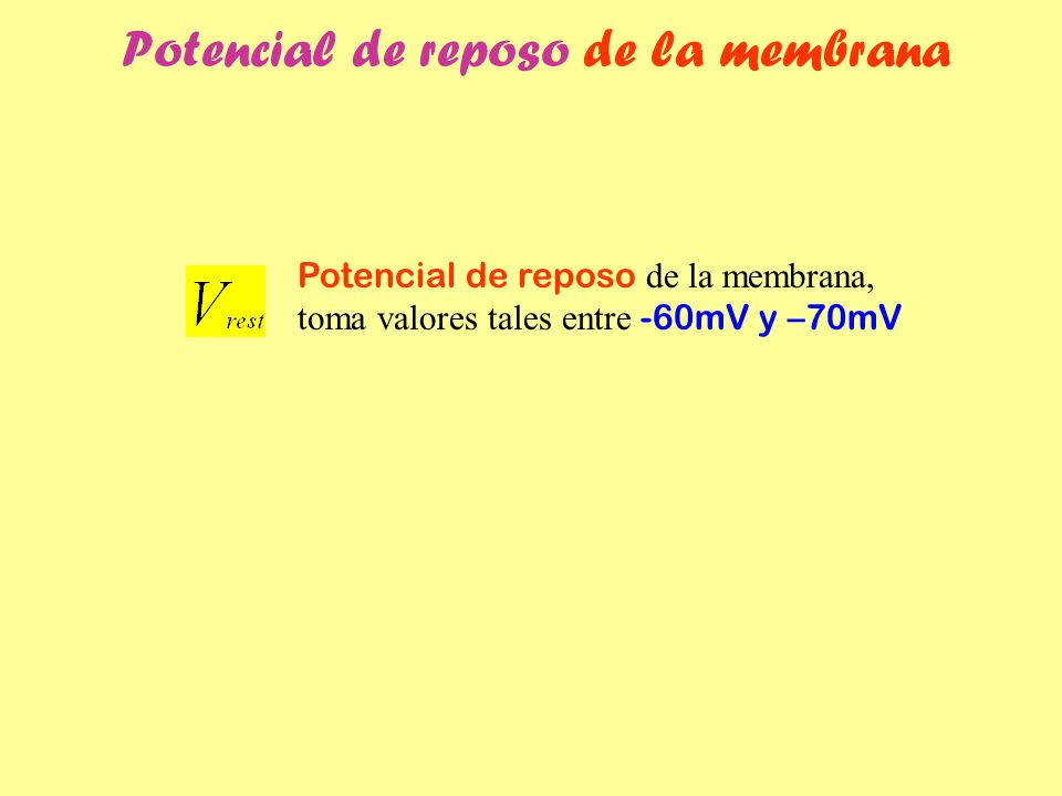 Potencial de reposo de la membrana