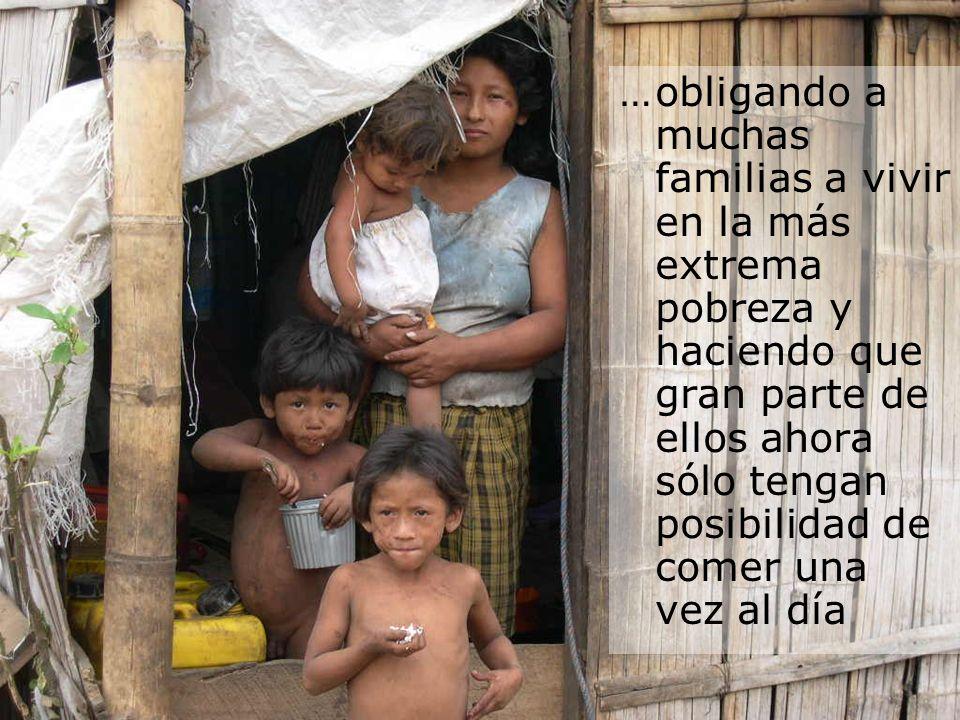 … obligando a muchas familias a vivir en la más extrema pobreza y haciendo que gran parte de ellos ahora sólo tengan posibilidad de comer una vez al día
