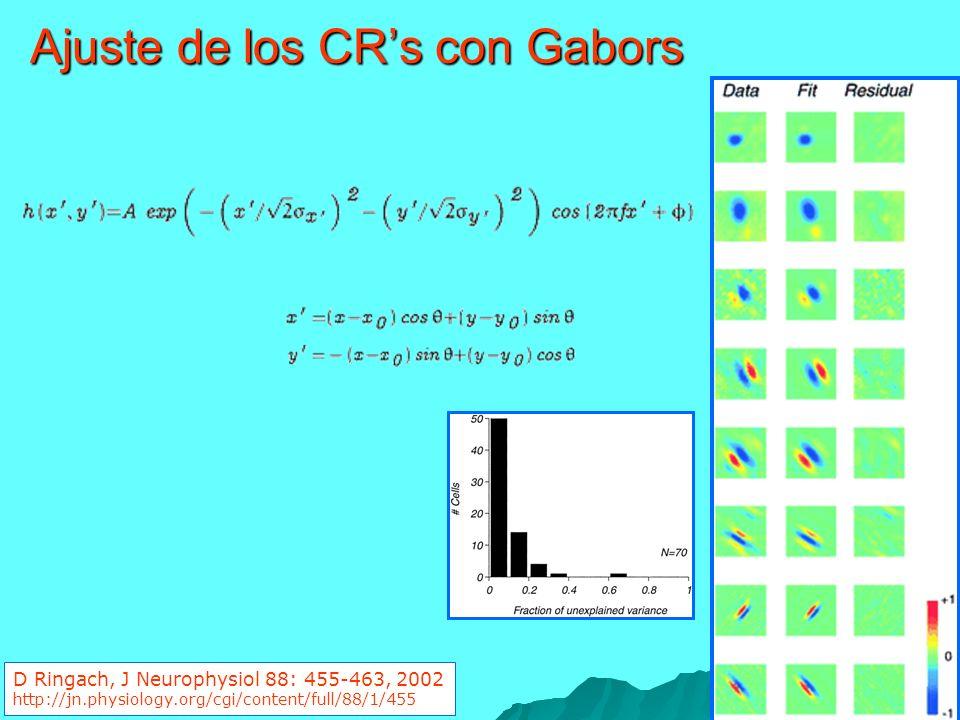 Ajuste de los CR's con Gabors