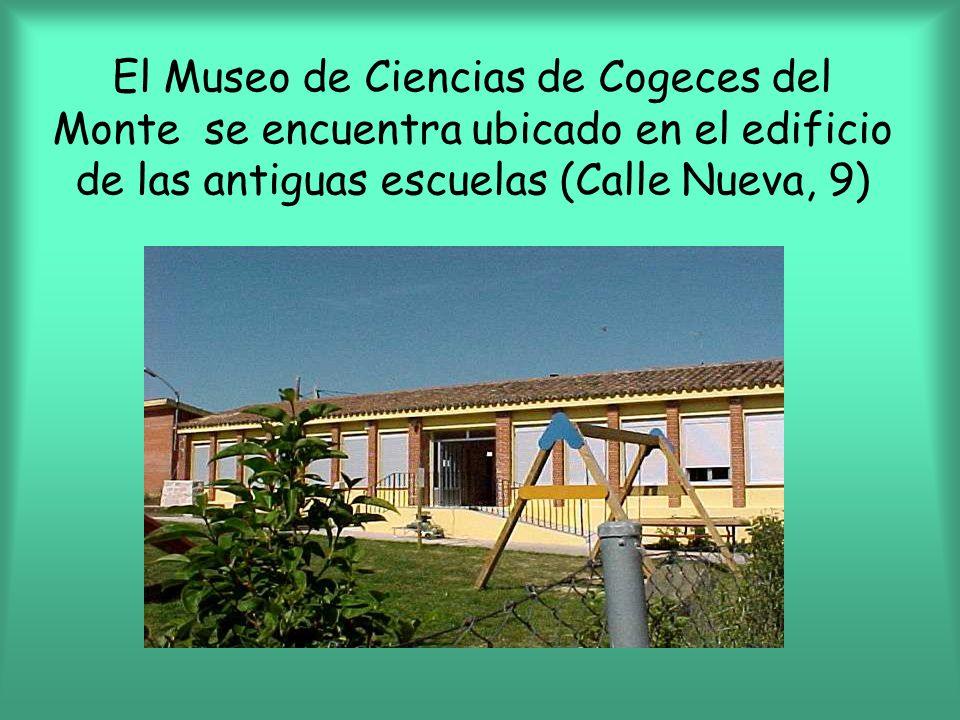 Cogeces del monte se encuentra en la provincia de for Calle alberca 9 boadilla del monte