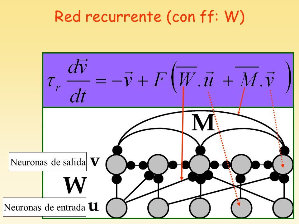 Red recurrente (con ff: W)