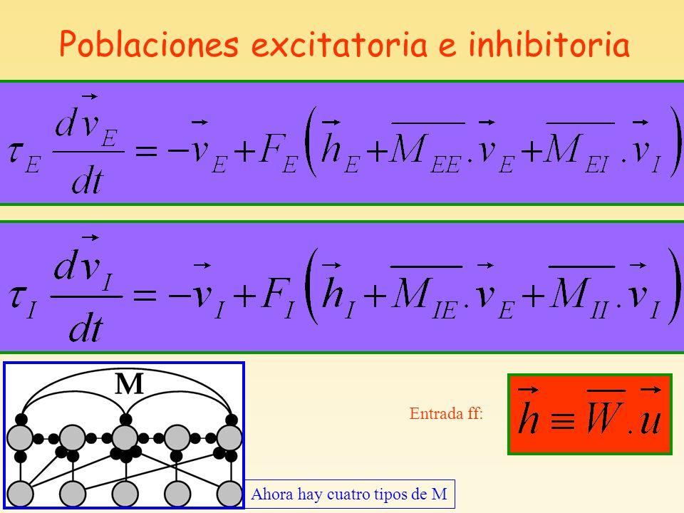 Poblaciones excitatoria e inhibitoria