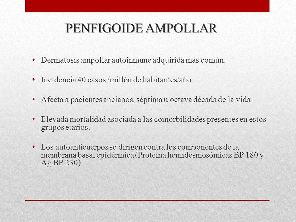 PENFIGOIDE AMPOLLAR Dermatosis ampollar autoinmune adquirida más común. Incidencia 40 casos /millón de habitantes/año.