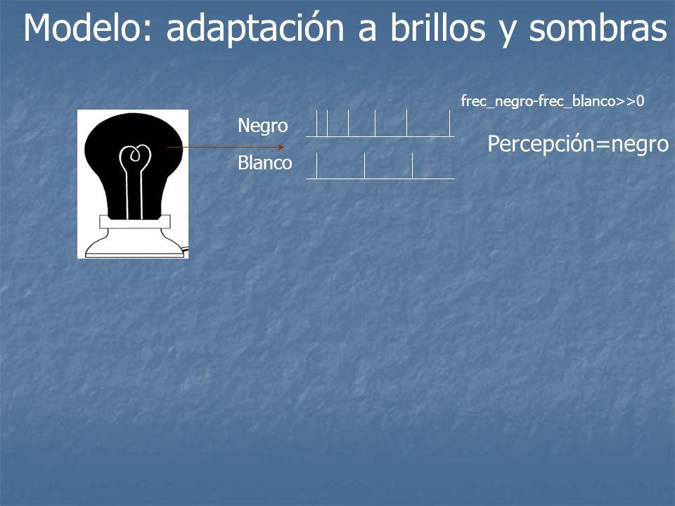 Modelo: adaptación a brillos y sombras