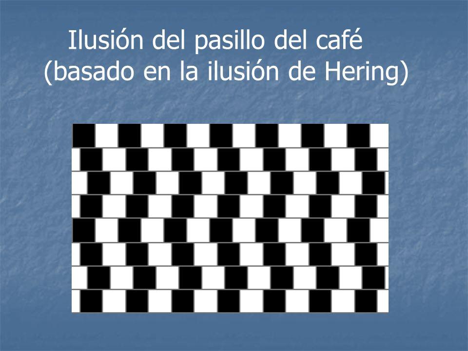 Ilusión del pasillo del café