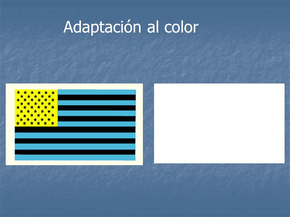 Adaptación al color