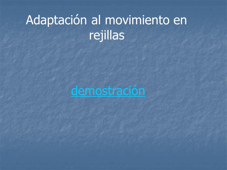 Adaptación al movimiento en