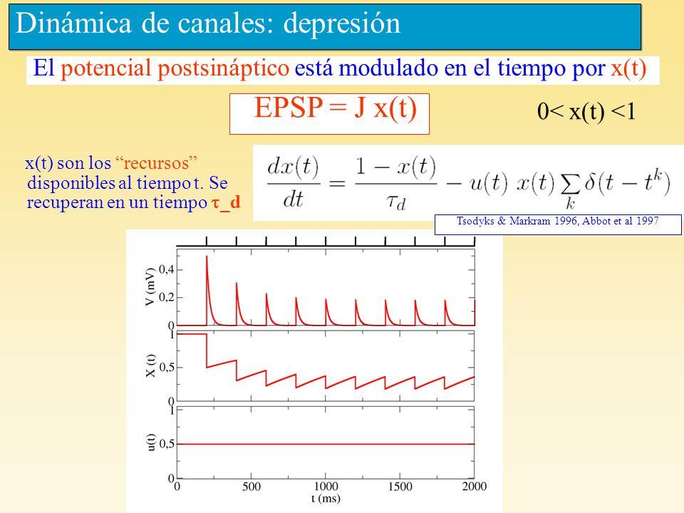 Dinámica de canales: depresión