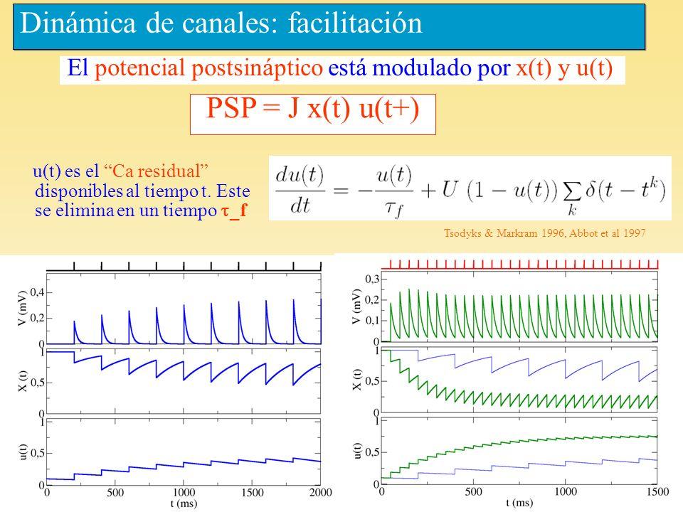 Dinámica de canales: facilitación
