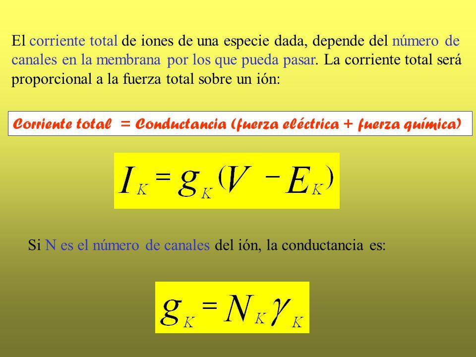 El corriente total de iones de una especie dada, depende del número de