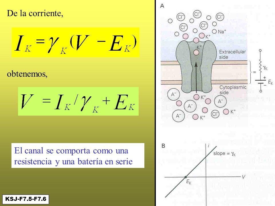 Conductancia y batería en paralelo