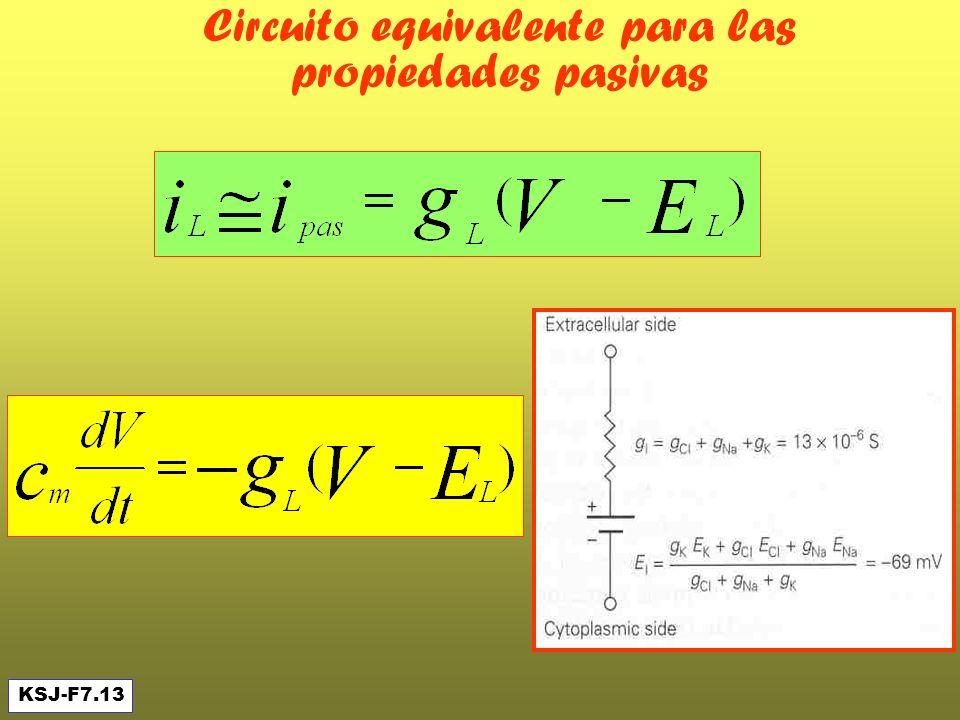 Circuito equivalente para las propiedades pasivas