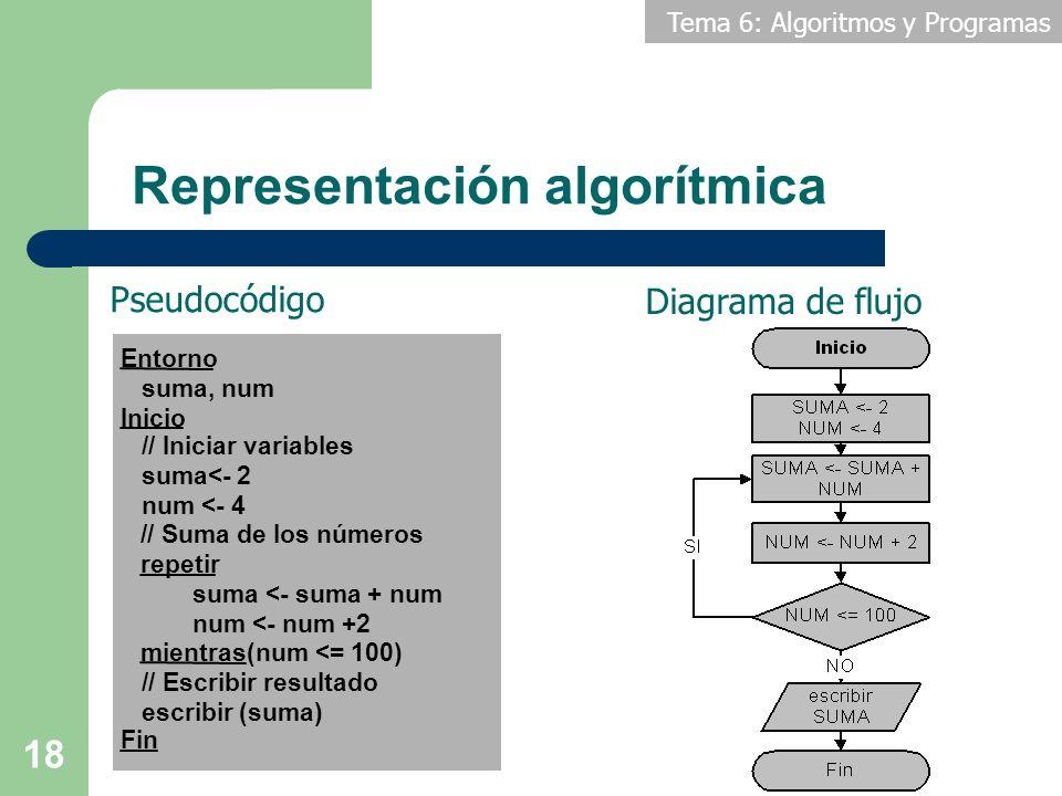 Representación algorítmica