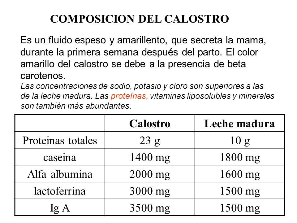 COMPOSICION DEL CALOSTRO