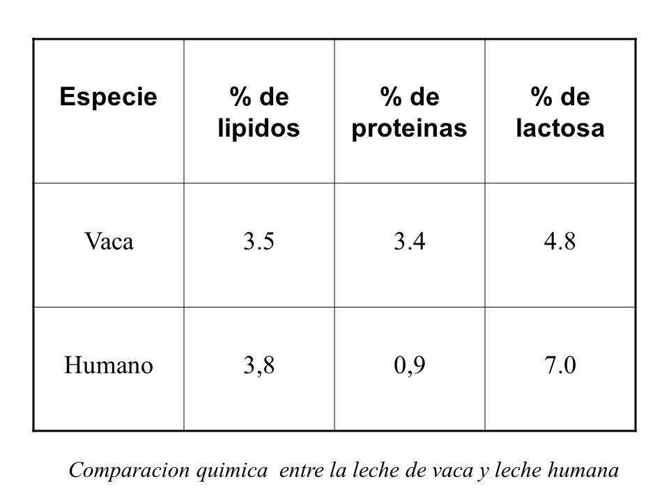 Especie % de lipidos % de proteinas % de lactosa