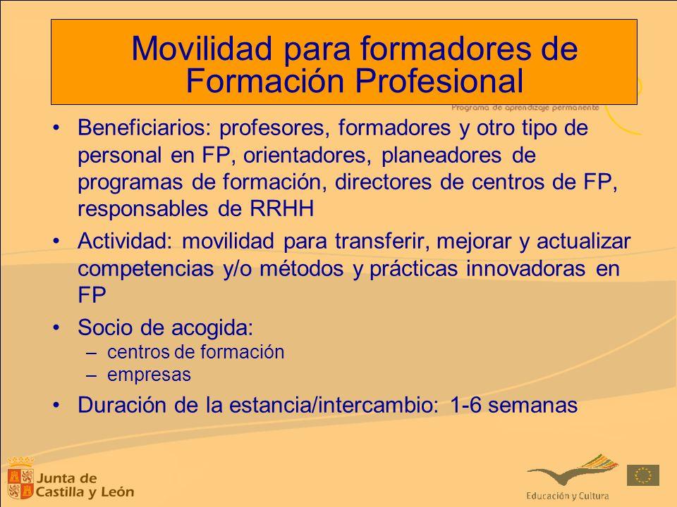 Movilidad para formadores de Formación Profesional