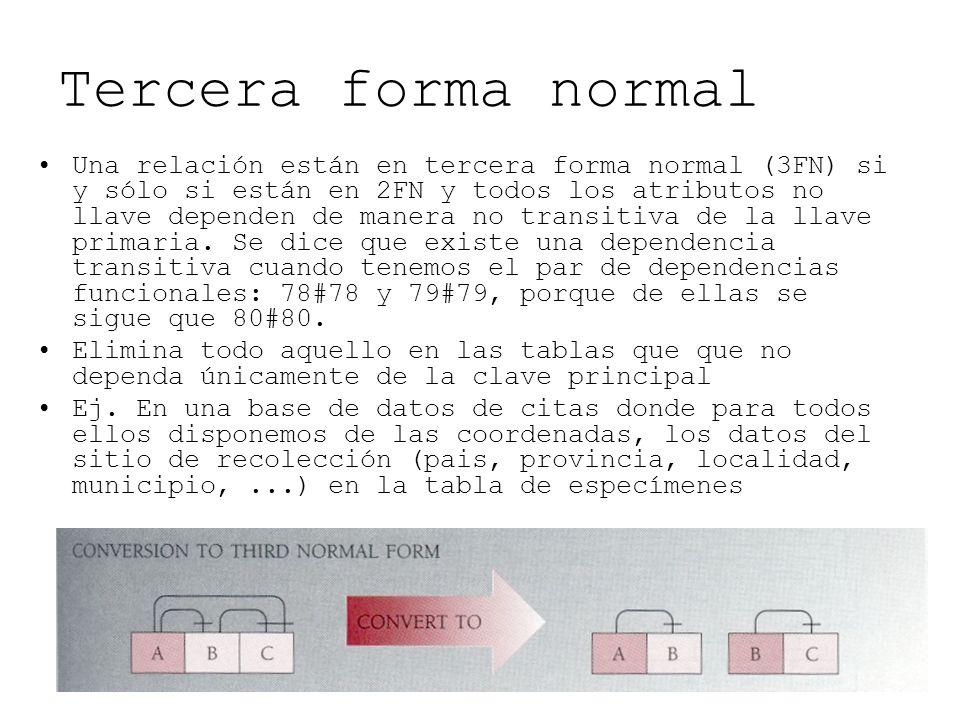 Tercera forma normal