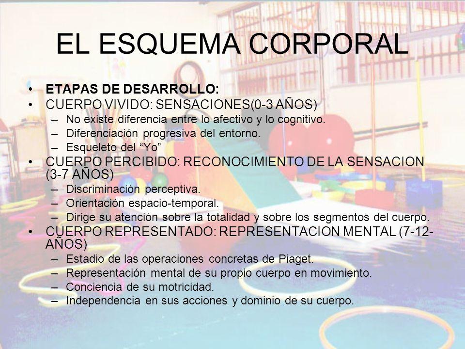 EL ESQUEMA CORPORAL ETAPAS DE DESARROLLO: