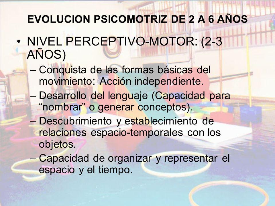 EVOLUCION PSICOMOTRIZ DE 2 A 6 AÑOS